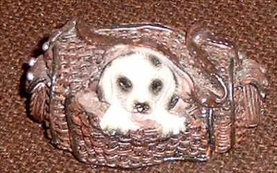 Dalmatiner Baby in einer Reisetasche