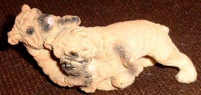 Zwei Bulldoggen-Welpen beim Raufen