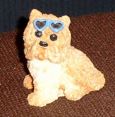 Terrier with sunglasses