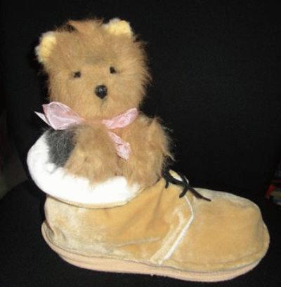 Yorkie im Schuh