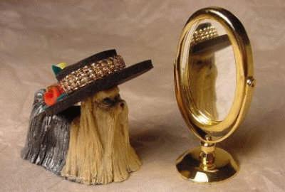 Yorkie mit Spiegel