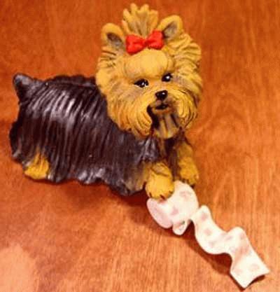 Yorkshire Terrier mit Klopapierrolle