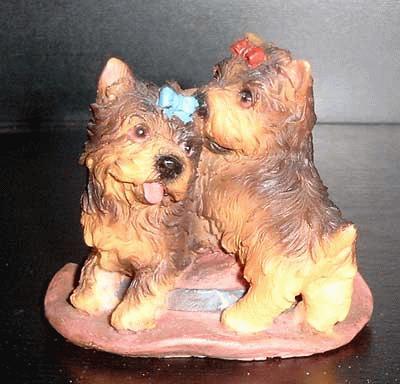 2 Yorkshire Terrier auf einem Hut