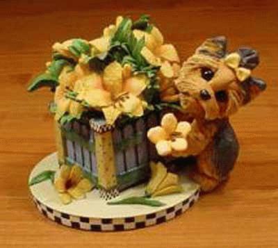 Blumenpflückender Yorkshire Terrier