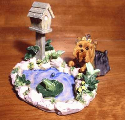 Yorkshire Terrier am Gartenteich