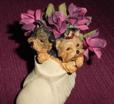 Yorkshire Terrier in einer Blumenvase