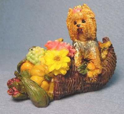 Erntedankfest mit Yorkshire Terrier