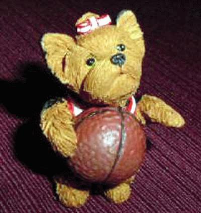Yorkshire Terrier mit Baseball