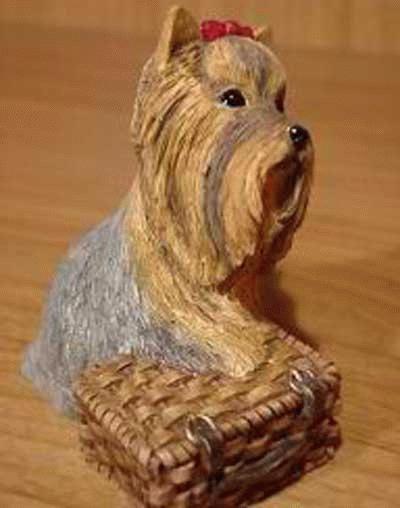 Yorkshire Terrier bewacht Picknick Korb