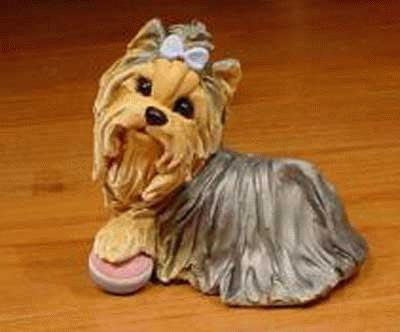 Yorkshire Terrier mit Lieblingsball