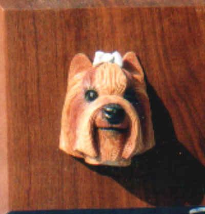 Yorkie-Kopf auf Holz