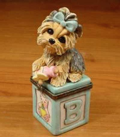 Baby-Yorkshire Terrier auf einem Schmuckkästchen