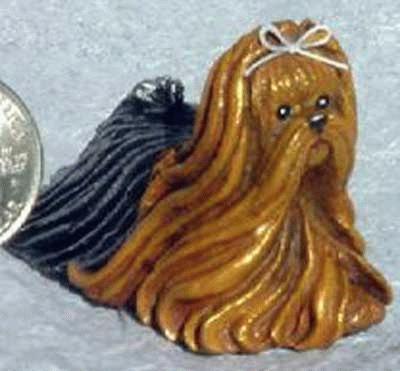 Miniatur Yorkshire Terrier
