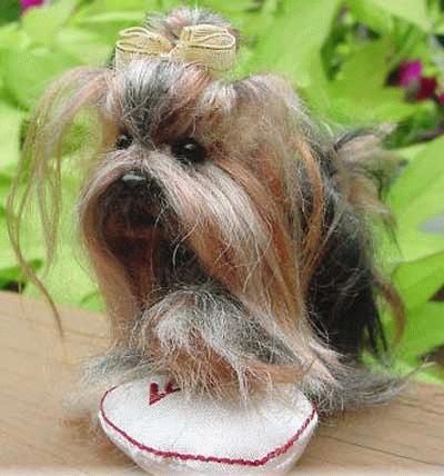 """Yorkshire Terrier """"Little Heidi"""""""