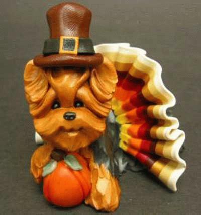 Thanksgiving Yorkshire Terrier