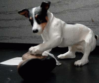 Jack Russel Terrier spielt mit einem alten Schuh