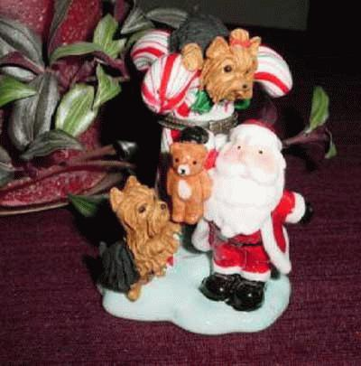 Yorkshire Terrier mit Nikolaus