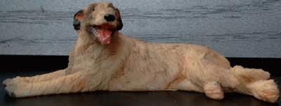 Liegender Irischer Wolfshund