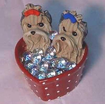 Yorkshire Terrier in einem Herzbad