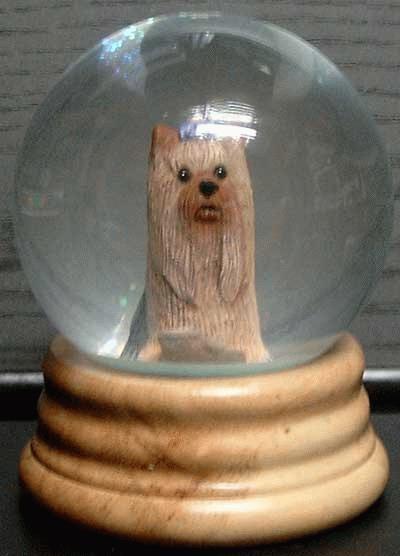 Wasserglobe mit Yorkshire Terrier