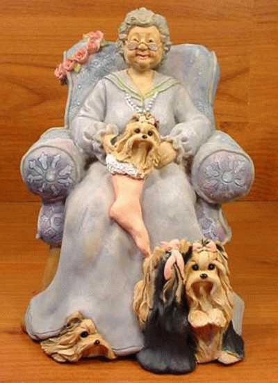 Yorkshire Terrier mit Oma