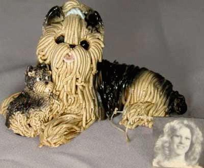 Yorkshire Terrier's ~ Mom & Baby