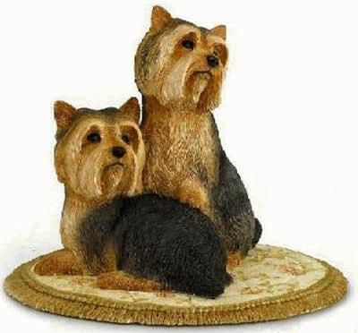 Pair of YORKSHIRE TERRIERS
