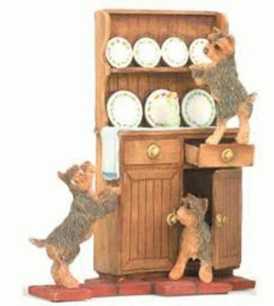 3 Yorkies spielen auf einem Küchenschrank