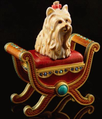 Parfüm Yorkshire Terrier auf einem Stuhl