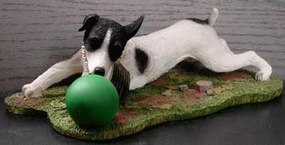 Spielender Jack Russel Terrier