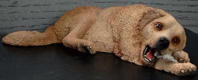 Liegender Golden Retriever mit Knochen