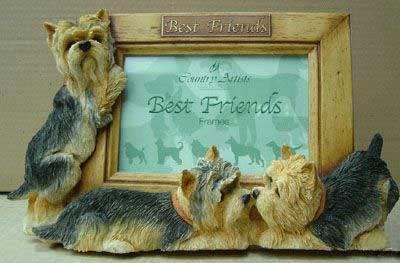 Bilderhalter / Bilderrahmen mit Yorkshire Terrier