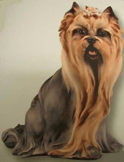 Sitzender Yorkshire Terrier