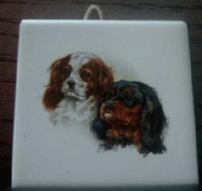 Small Cavalier King Charles Spaniel tile