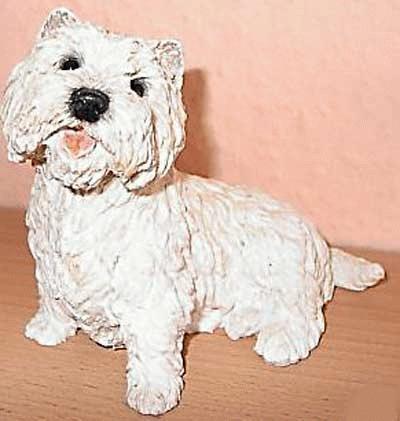 Sitzender Westhighland Terrier, Westie
