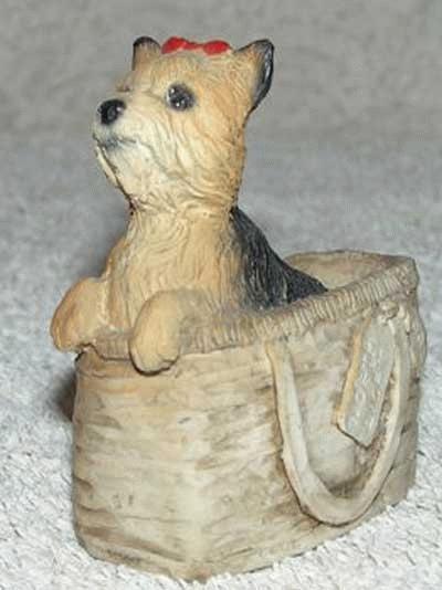 Yorkshire Terrier in einer Tasche
