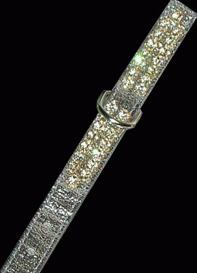 Silver 2 Row Jeweled Collar with silver lead