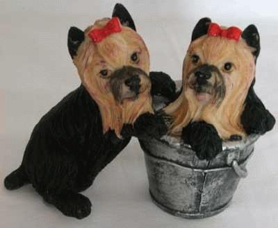 2 Yorkies with a paint bucket