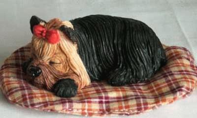Schlafender Yorkshire Terrier