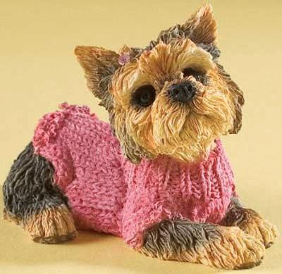 Yorkshire Terrier in einem pinken Pullover