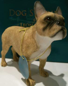 Stehende Französische Bulldogge