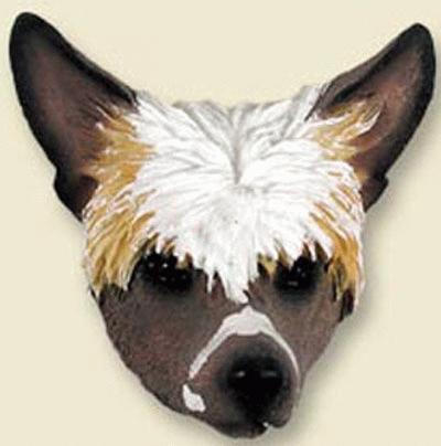 Kopf eines Chinese Crested Hund (Magnet)