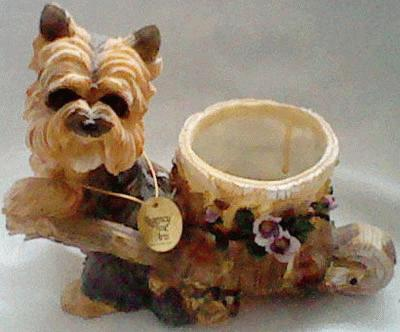 Yorkshire terrier with a wheelbarrow