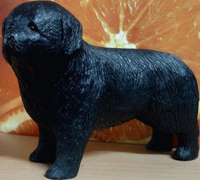 Standing Newfoundland Dog