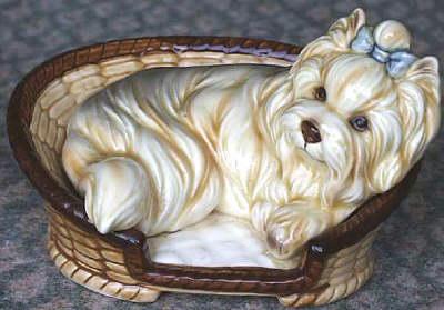 Yorkshire Terrier im Korb