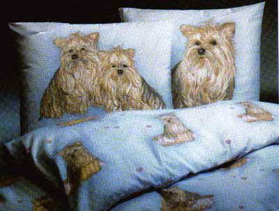 Bettwäsche (ein Kissenbezug & ein Bettbezug)