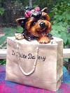Yorkie in einer Einkaufstasche