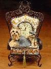 Yorkshire Terrier auf einer Stuhl-Uhr :-)