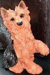 Sitzender, Pfote gebender Yorkshire Terrier