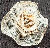 Goldene Schleife als Rose